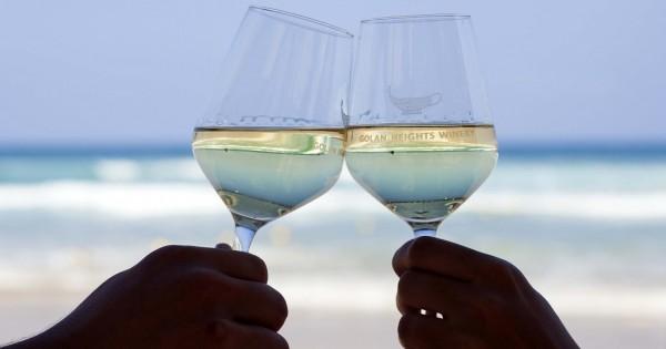 4 המלצות תרבות שחובבי יין חייבים להכיר