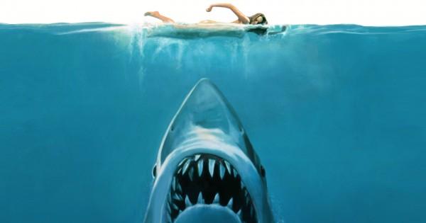 המיתוס הכי שכיח על נשים במחזור ששוחות בים. האם יש בו אמת?