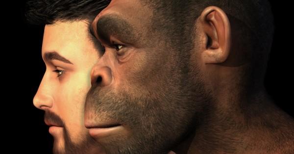 האדם הקדמון חי בשוויון מלא בין גברים ונשים