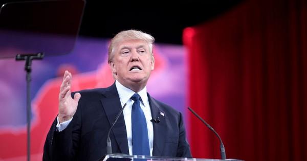 פרשת האונס של דונלד טראמפ חוזרת לכותרת