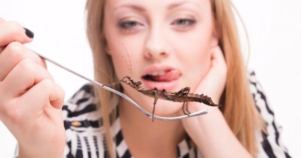 האם מזון מבוסס חרקים יציל את העולם?