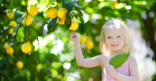 הפתרון המפתיע לסובלים מאסטמה: לימון