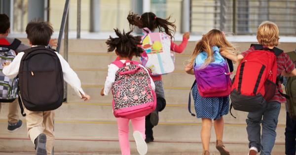תיקים לבית הספר ולגן: אופציות מומלצות