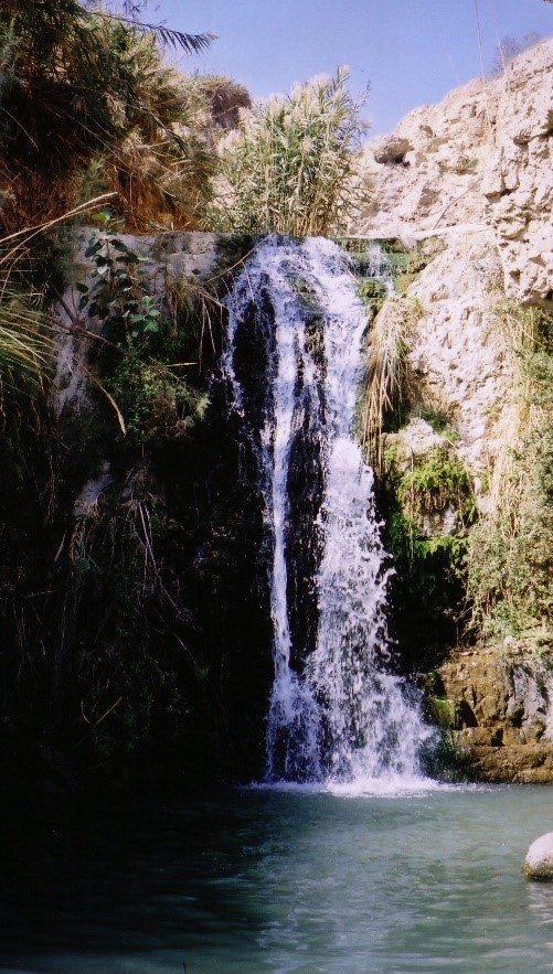 מפל בנחל דוד. צילום: אלייג'ה ון דר גיסן (ויקיפדיה)