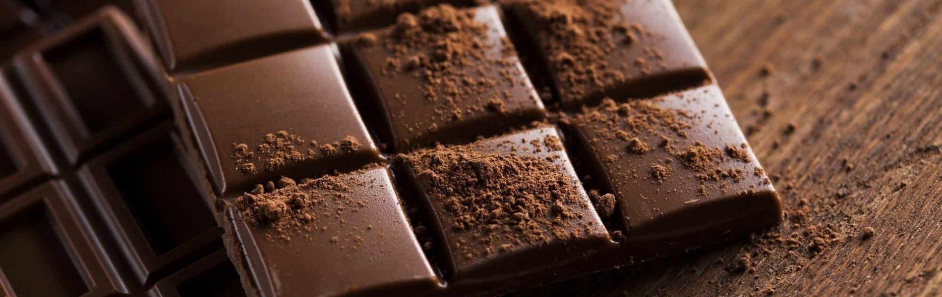 מריר: גידולי הקקאו משגשגים ואלה חדשות רעות לחובבי השוקולד