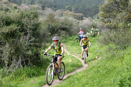 """רוכבי אופניים ביער בית קשת ארכיון צילומי קק""""ל"""