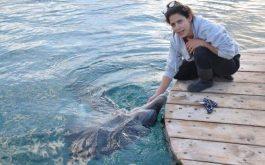 ריף הדולפינים אילת. צילו אינה מנשה