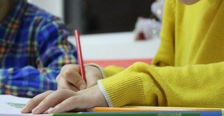 ההתפתחות של תעשיית השיעורים הפרטיים