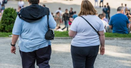 """""""ניתוח בגלולה"""": מדענים מהרווארד פיתחו גלולה שתילחם בהשמנת יתר כמו ניתוח בריאטרי"""