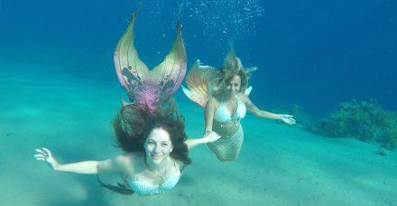 דיסני זה כאן: בנות הים הולכות להביא את השלום