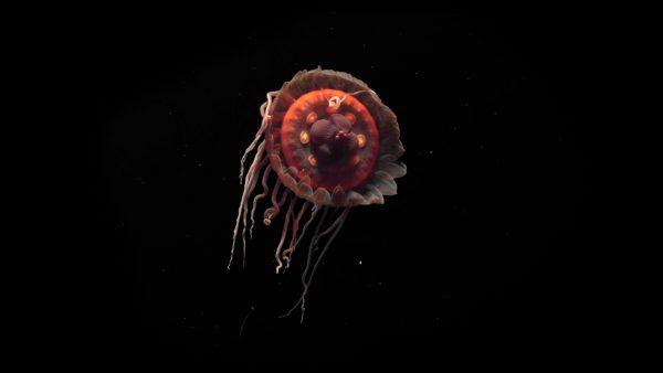 יצורים ממעמקים במצפה התת ימי באילת קרדיט לתמונה Rebikoff Foundation.jpg