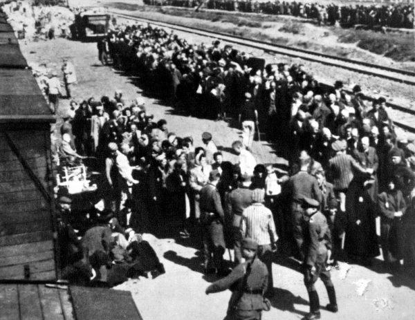 סלקציה בבירקנאו אושוויץ. צילום מתוך shutterstock