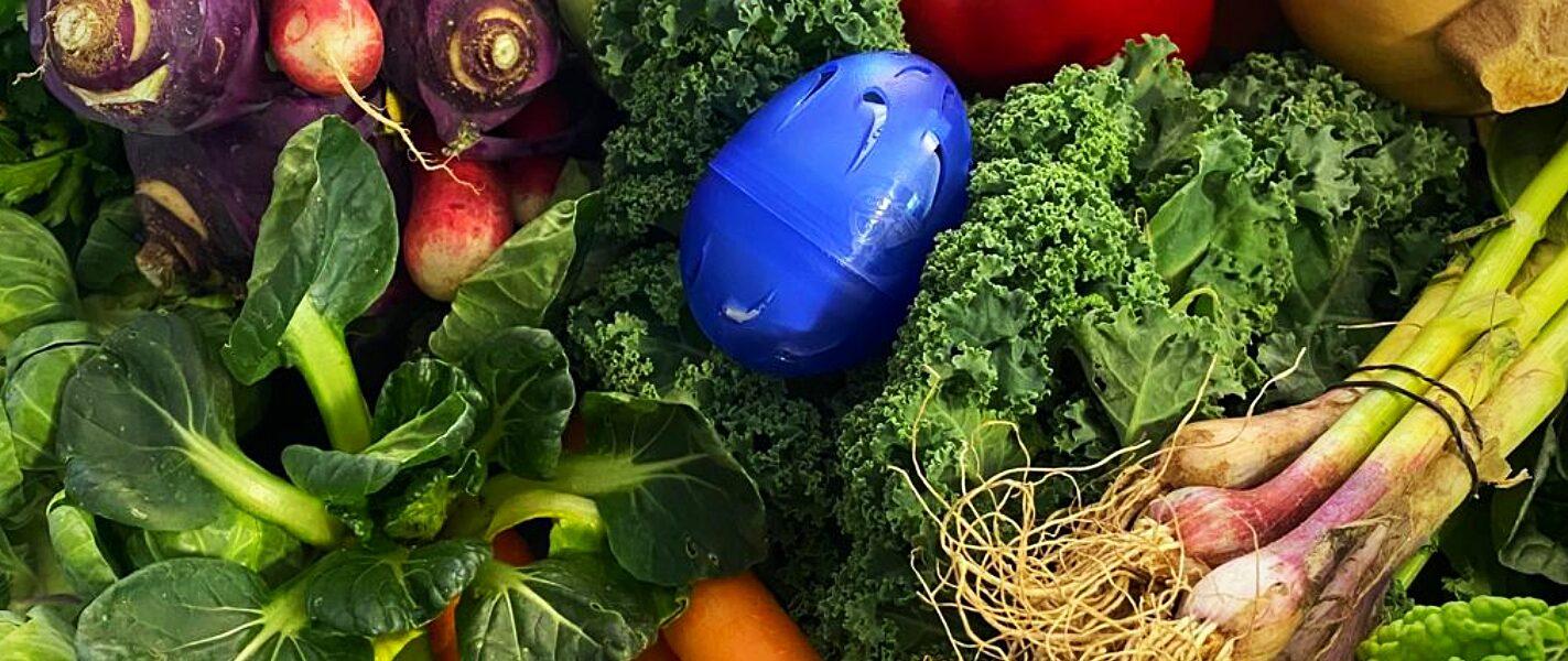 הגיע הזמן לעבור לאוכל בריא