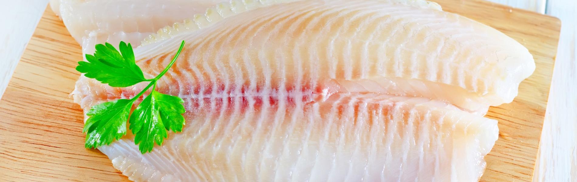 דגים טריים: 5 סיבות טובות להעדיף רק אותם
