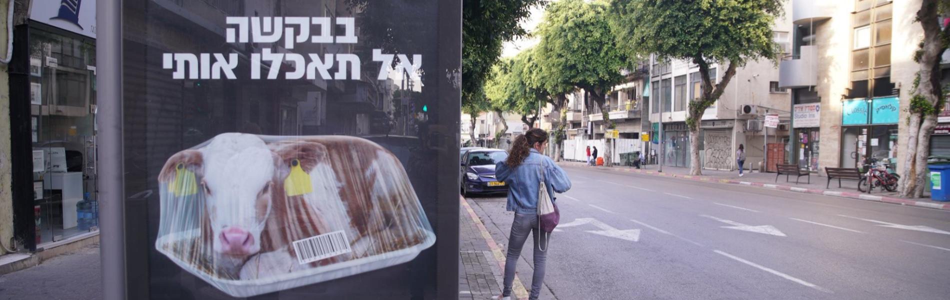 המהפכה הטבעונית בישראל: מקומץ טבעונים שולי לאלפי מנגלים ללא בשר