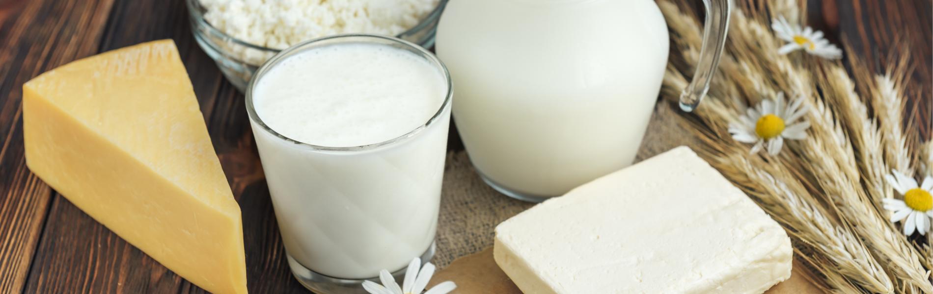 סקר onlife מגלה: כמה מוצרי חלב אנחנו צורכים ביום?