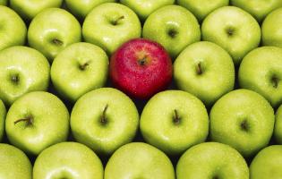 מה הרכיבים שממש כדאי שיהיו במזון שלכם?