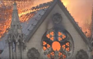 שריפת הענק בקתדרלת נוטרדאם: לשקם או להרוס כליל?
