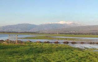 """חו""""ל זה כאן: מצאנו את אחד המקומות הקסומים בישראל"""